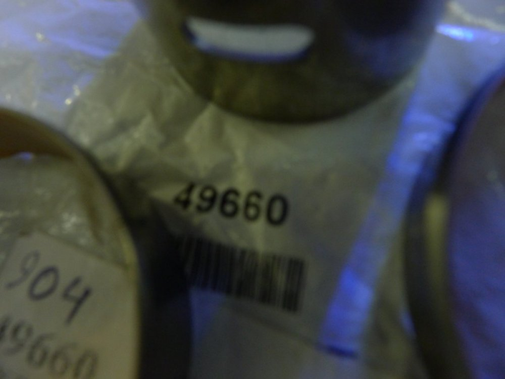P1060138.JPG